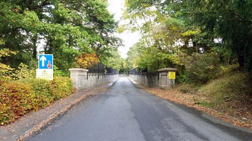 Gele-Bridge